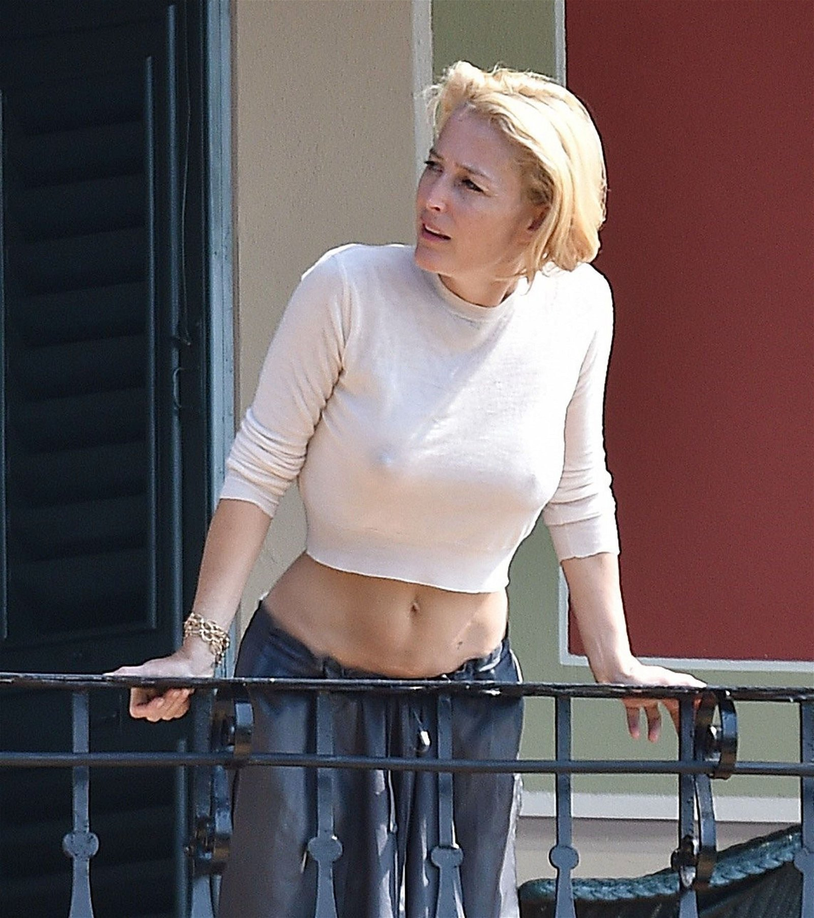 Gillian Anderson sexy naked